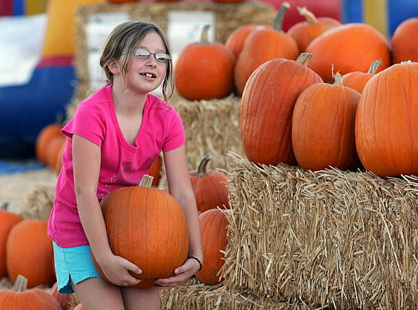 Pumpkin Patch Attracts Fall Revelers